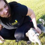 Experienced, Most Qualified Pet Care Provider in the Macomb Area