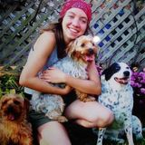 Holistic Pet-Sitter in Asheville, NC. 13 years experience!
