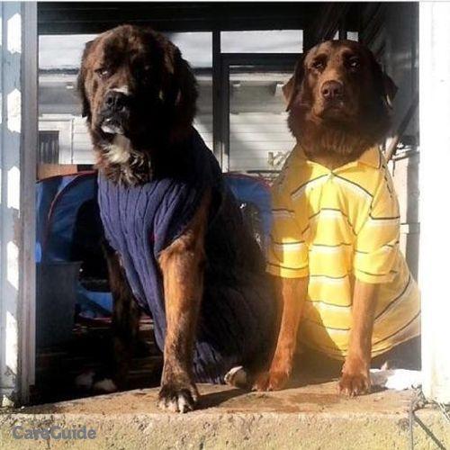 Pet Care Provider Richard Mahaffey's Profile Picture