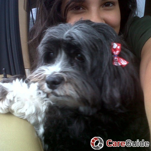 Pet Care Provider Alejandra Quiceno's Profile Picture