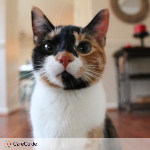 Pet Care Provider Brendan M's Profile Picture