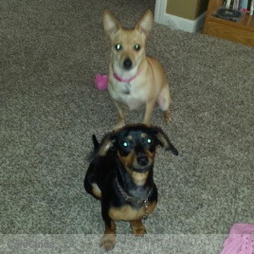 Pet Care Job Paula Gardner's Profile Picture