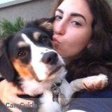 Dog Walker, Pet Sitter in Sunnyvale