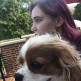 College student looking to give love to pets!