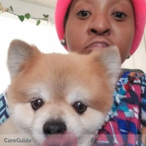 Pet Care Provider Tiarra Walters's Profile Picture