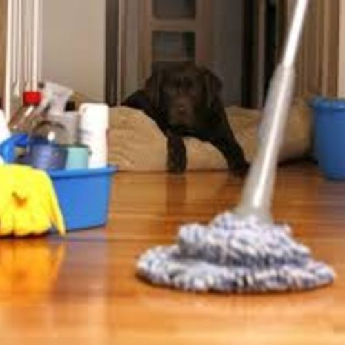 Housekeeper Provider Linda T Gallery Image 2