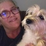 Wonderful Dog/Cat Sitter for Hire