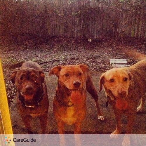 Pet Care Job Vinny L's Profile Picture
