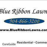 Blue Ribbon Lawns