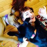 Friendly, Energetic, Dog Walker/Cat Sitter Available at Reasonable Price-Bucktown/Wicker Park/Lincoln Park