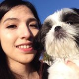Honest Pet Carer in Mountain View, California