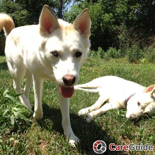 Pet Care Provider Kim  Howard's Profile Picture