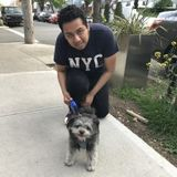 Well Trained House Sitter in Maspeth, New York