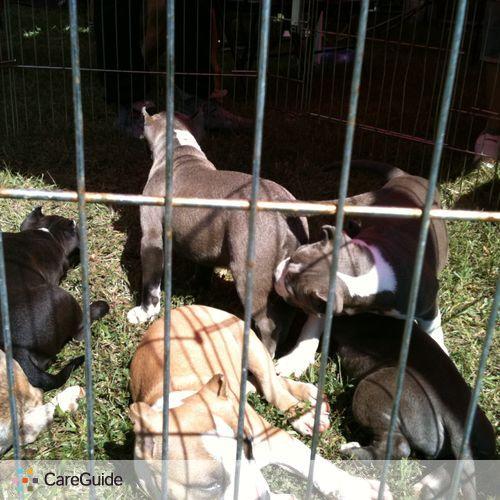 Pet Care Provider Linnell E's Profile Picture