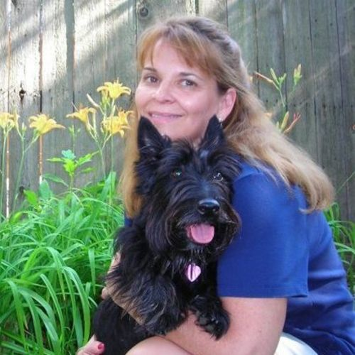 House Sitter Provider Chrissy D's Profile Picture
