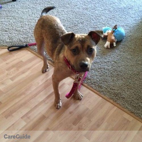 Pet Care Job Deb Cornell's Profile Picture