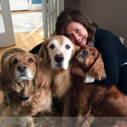 Pet Care Provider Lauren Santucci's Profile Picture