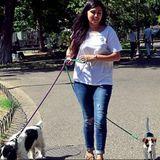 Experimented Dogwalker in Montral