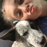 Im Tessa, and I would like to take car of animals in Shelby or Boiling Springs Nc.