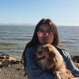 Qualified Dog Walker/Sitter for Hire
