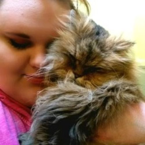 Enthusiastic and fun pet sitter for dogs, cats and small animals!