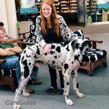 Dog Walker, Pet Sitter in Los Altos