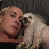 Loving dog sitter