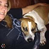 Dog Walker, Pet Sitter in Cape Coral