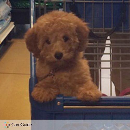 Pet Care Job Michele Riley's Profile Picture