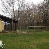Pet Sitter, Kennel in Ostrander