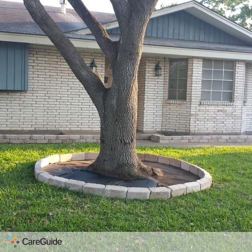 Best of the Best Palm & lawn care services