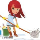 Dependable and Efficient Cleaning