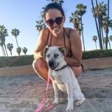 Dog Walker, Pet Sitter in Los Angeles