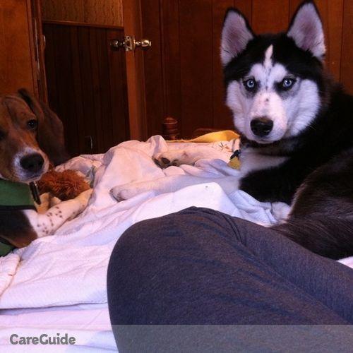 Pet Care Job Sam Rhoades's Profile Picture