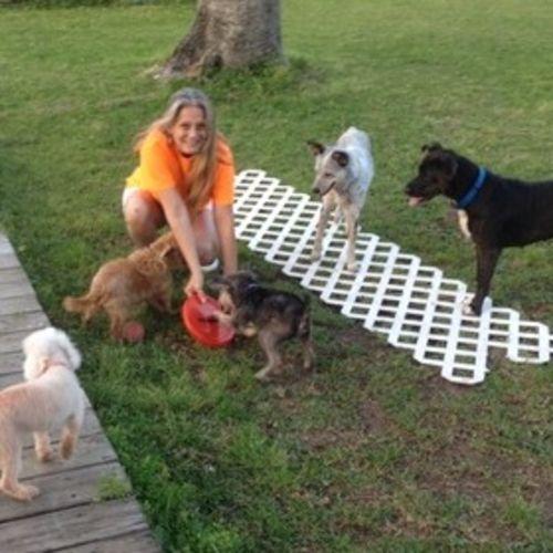I am a Pet Sitter Pet Walker Pet Trainer Pet Caregiver