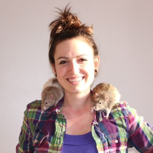 Pet Care Provider Krissy H Gallery Image 1