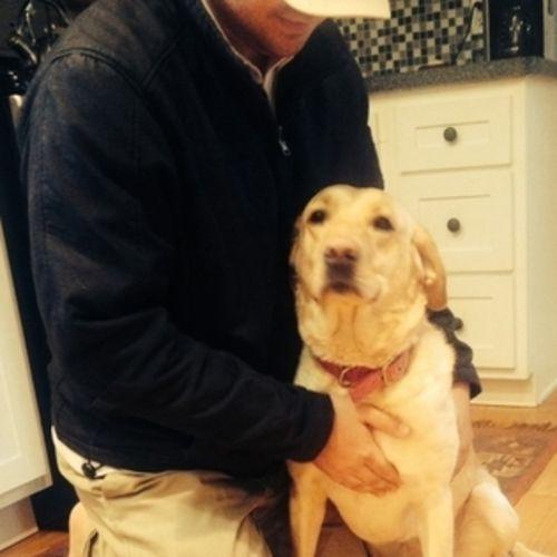 Pet Care Provider Brenton D's Profile Picture