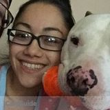 Dog Walker, Pet Sitter in San Jose