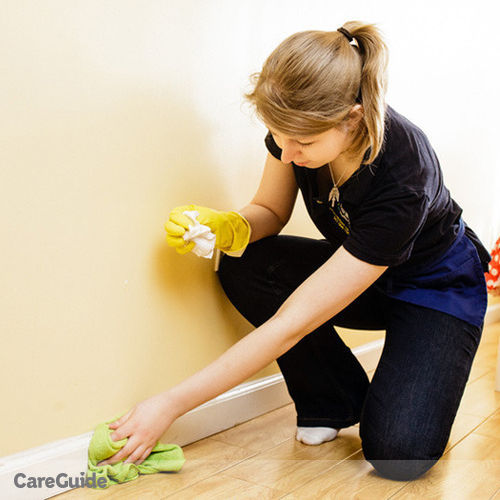 Housekeeper Provider Mg Clean Care Services's Profile Picture