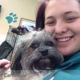 Dog Walker, Pet Sitter in Swisher