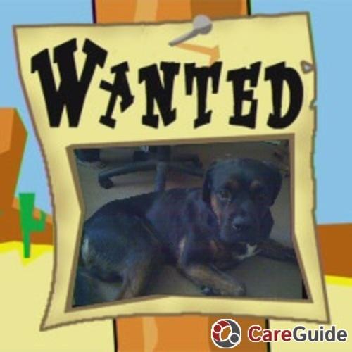 Pet Care Provider Shannon Pressley's Profile Picture