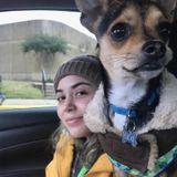 Dog Walker & Pet Sitter in Garland TX