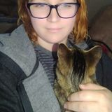 Hardworking Housesitter in Ellensburg with experience with animals.