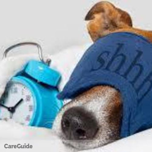 Pet Care Provider Joshua Payne's Profile Picture