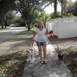 Dog Walker, Pet Sitter in Fort Lauderdale
