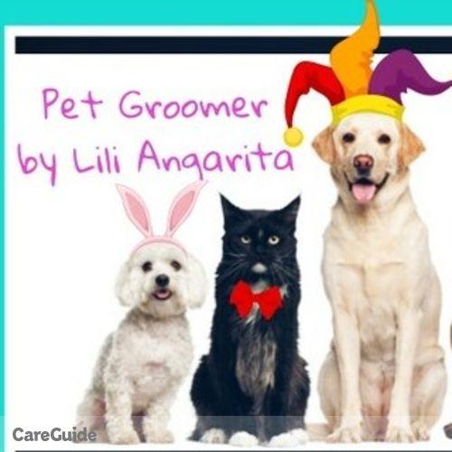 Pet Care Provider Lili A's Profile Picture