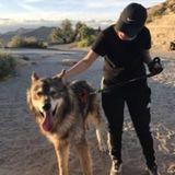 Dog Walker in Riverside