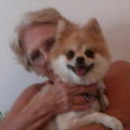 Pet Care Provider Cindy T Gallery Image 1