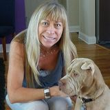 Piper's Pampered Pets, LLC is a professional, licensed, insured and bonded pet sitter and dog walker.
