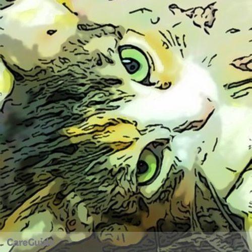 Pet Care Provider Deb M's Profile Picture